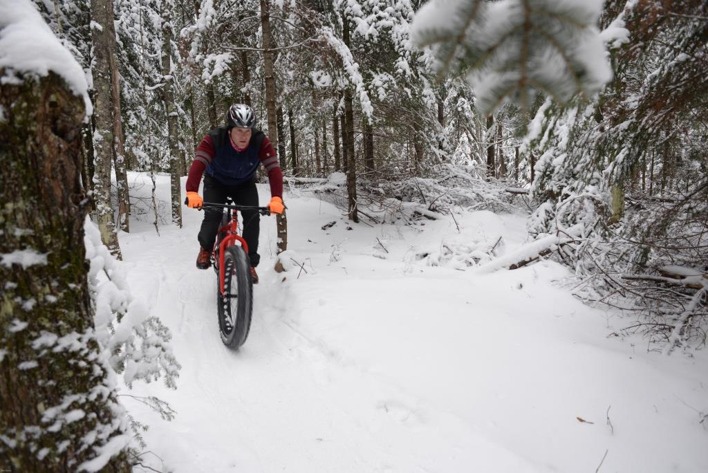 Fat biker in snow